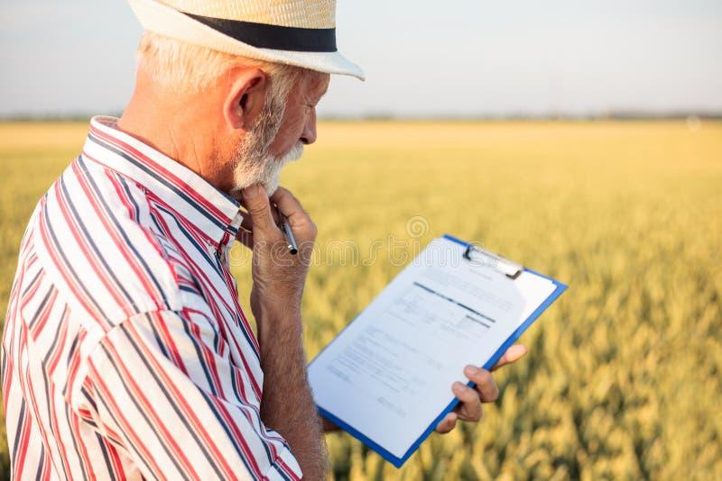 Hög bonde eller agronom som ut fyller frågeformuläret, medan kontrollera den stora organiska lantgården royaltyfria foton