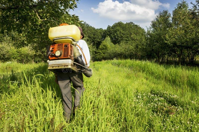 Hög bonde som besprutar fruktträdgården royaltyfria foton
