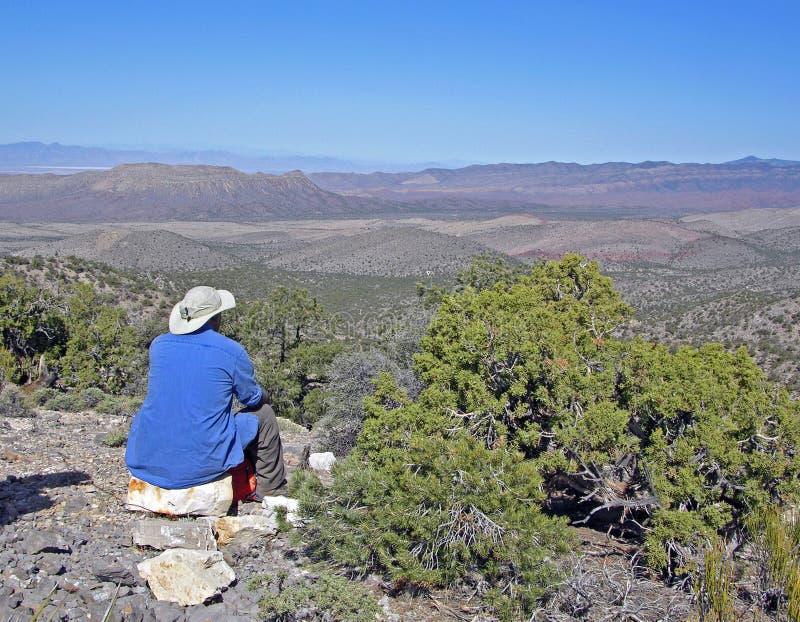 Hög fotvandrare som tycker om sikt av öknen nära Las Vega royaltyfri fotografi