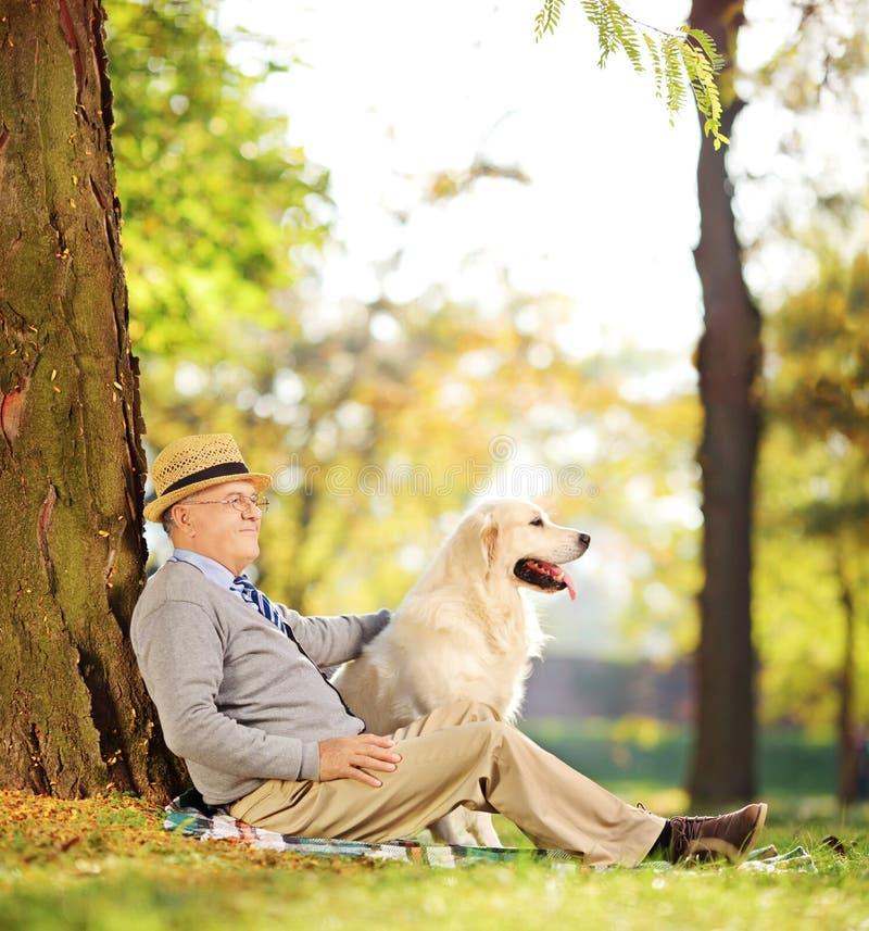 Hög gentleman och hans hundsammanträde på jordning i en parkera arkivfoton