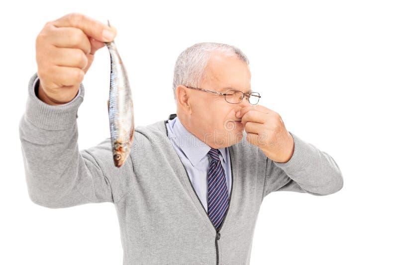Hög gentleman som rymmer en rutten fisk royaltyfria bilder
