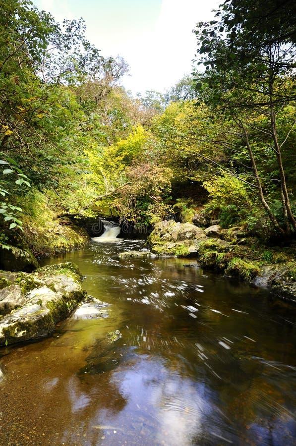 Download Hög kraftBeck arkivfoto. Bild av flod, kraft, clear, vegetation - 27285376