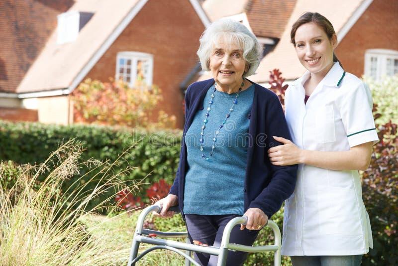 Hög kvinna för vårdareportion som går i trädgård genom att använda gå ramen royaltyfri foto