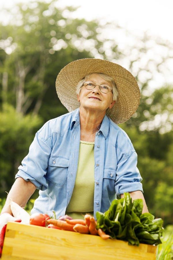 Hög kvinna i trädgård arkivbilder