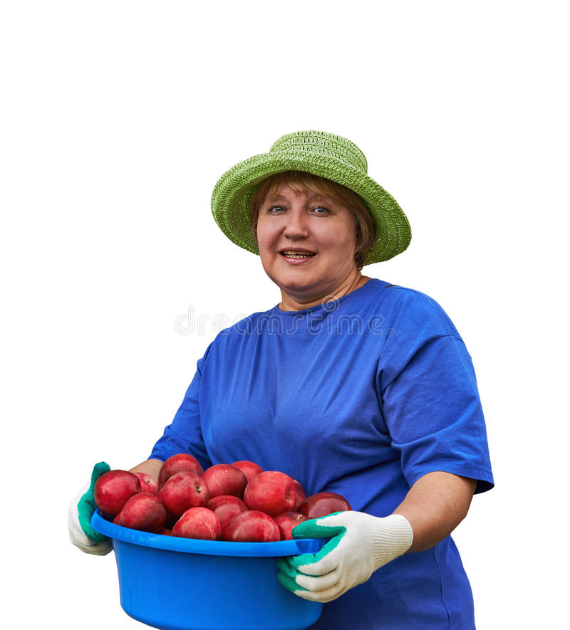 Hög kvinna med äpplen royaltyfri fotografi