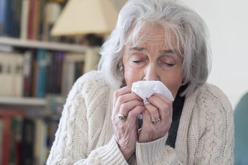 Hög kvinna med influensa som hemma blåser näsan arkivbilder
