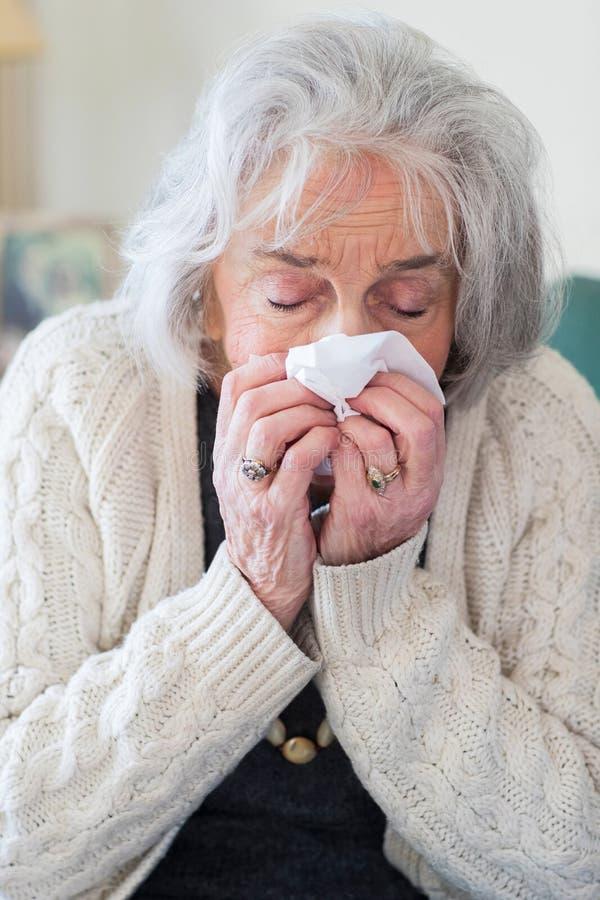 Hög kvinna med influensa som hemma blåser näsan fotografering för bildbyråer