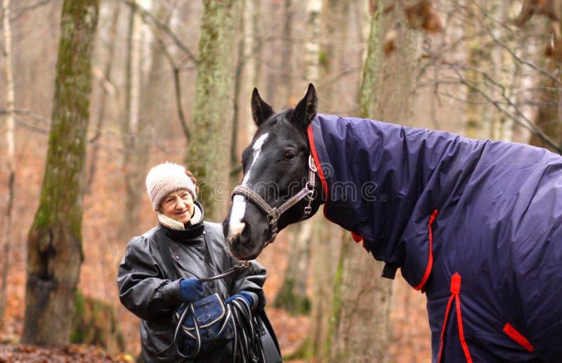 hög kvinna och häst arkivfoton