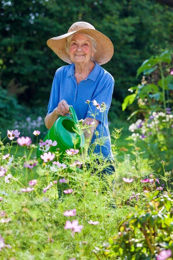 Hög kvinna som bevattnar blommaväxter på trädgården arkivfoton