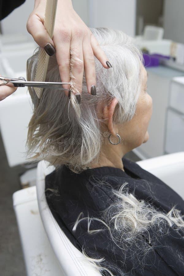 Hög kvinna som får frisyr i salong royaltyfri bild