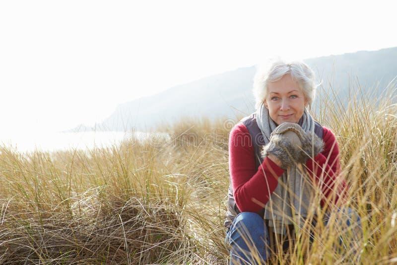 Hög kvinna som går till och med sanddyn på vinterstranden royaltyfri bild