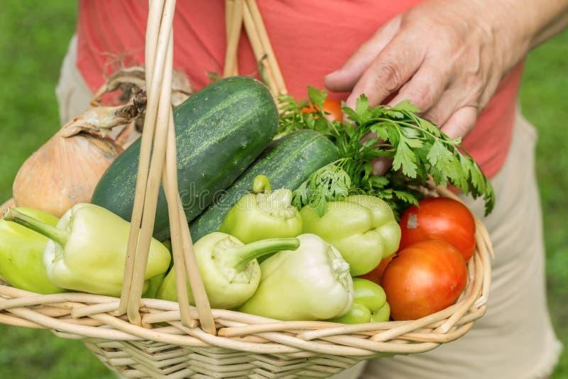 Hög kvinna som rymmer en korg med grönsaker fotografering för bildbyråer
