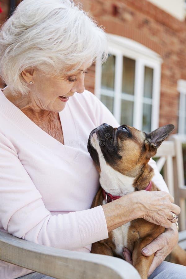 Hög kvinna som sitter på bänk med den franska bulldoggen för husdjur i hjälpt bosatt lätthet arkivbild