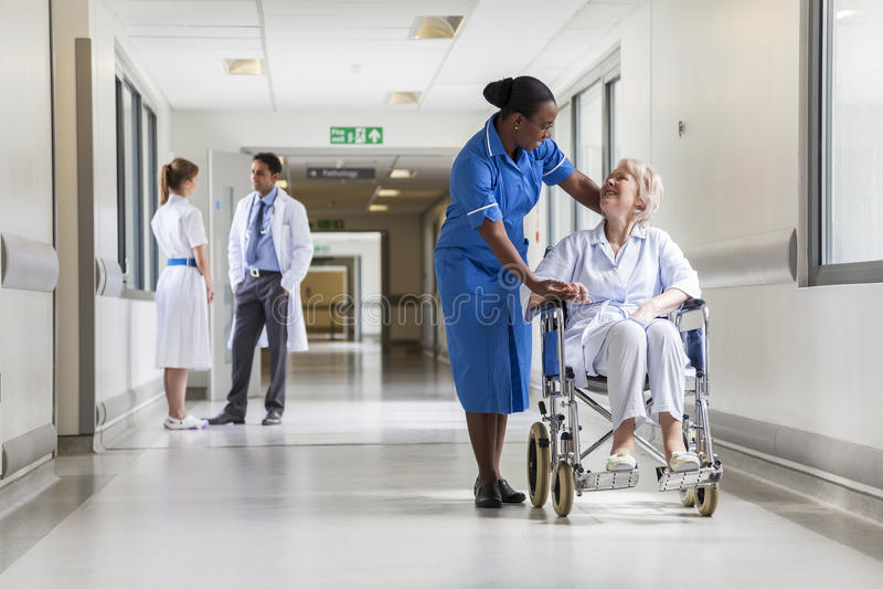 Hög kvinnlig patient i rullstol & sjuksköterska i sjukhus arkivbilder