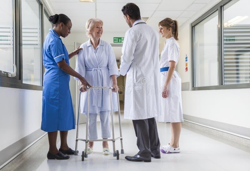Hög kvinnlig sjukhustålmodig, i att gå ramdoktor Nurse arkivfoton