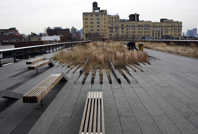 hög linje ny park york royaltyfri foto