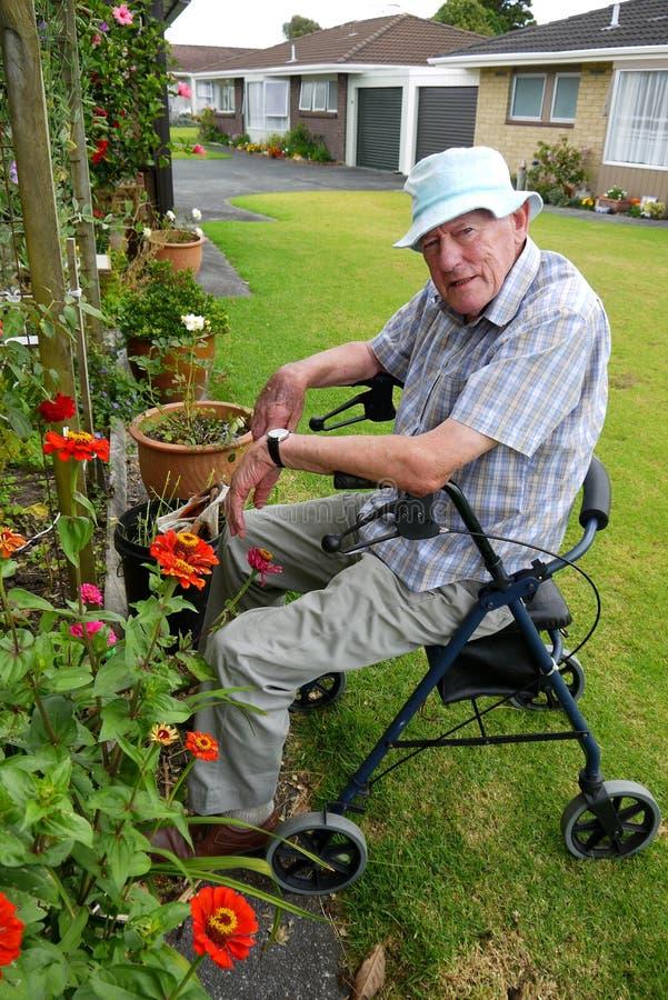 Hög man: arbeta i trädgården för sammanträde royaltyfria bilder