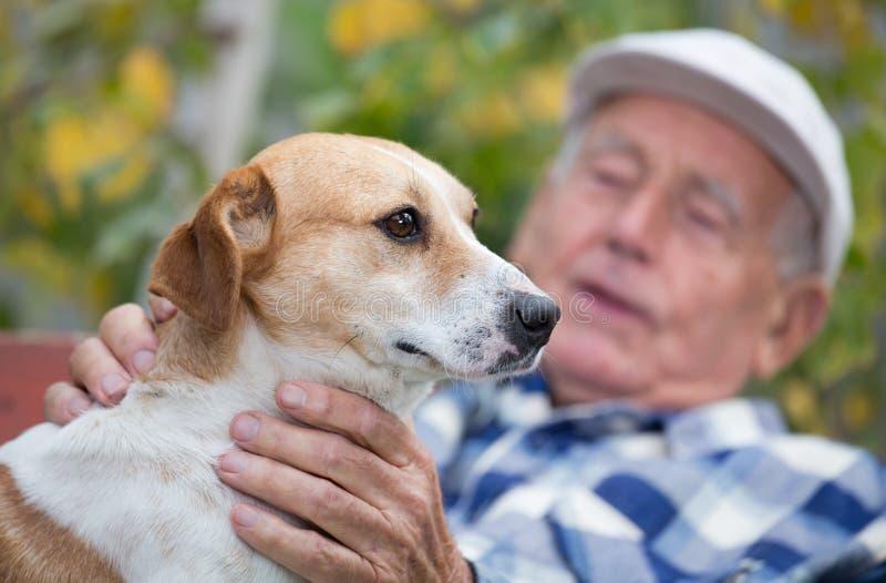 Hög man med hunden i borggård arkivbilder