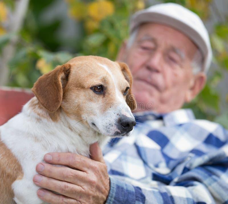 Hög man med hunden i borggård fotografering för bildbyråer