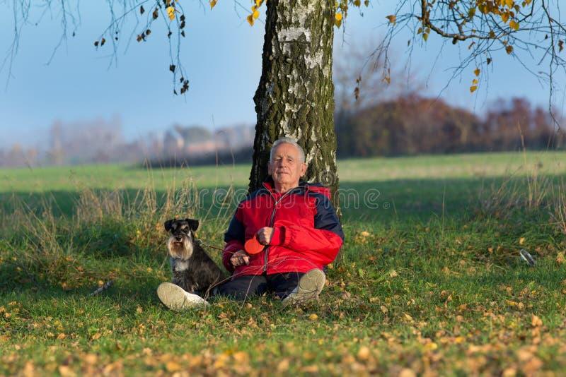Hög man med hundsammanträde på gräsbenägenhet på träd royaltyfri foto