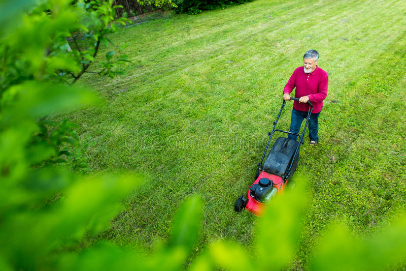 Hög man som mejar hans trädgård - som skjutas från över arkivbild