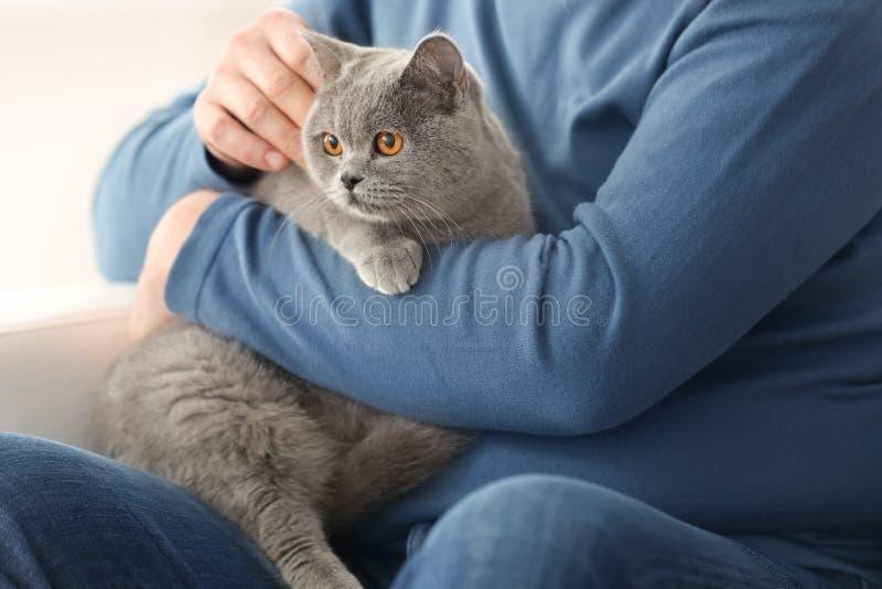 Hög man som rymmer den gulliga katten royaltyfria foton