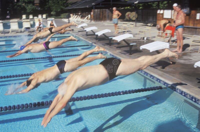 Hög olympisk simningkonkurrens royaltyfri bild