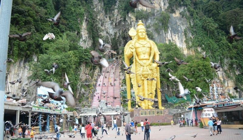 Hög slutarehastighet: vänliga duvor, batugrottor Kuala Lumpur arkivfoton