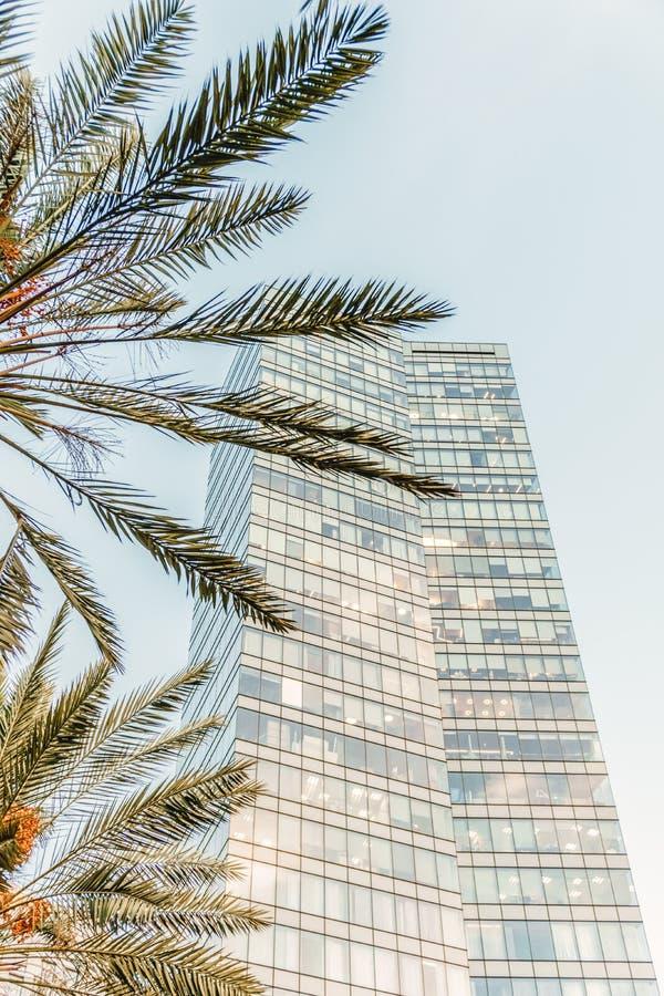 Hög stads- byggnad för israeliskt kontor i Tel Aviv Rothschild boulevard arkivbilder
