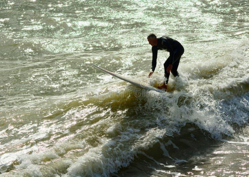 Hög surfare arkivfoto