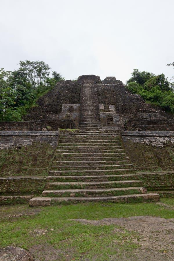 Hög tempelpyramid royaltyfria foton
