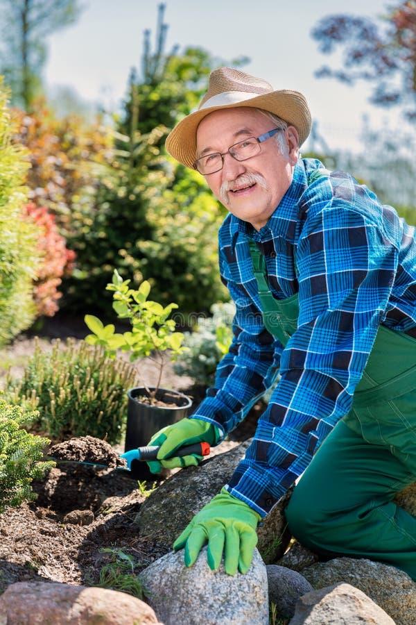 Hög trädgårdsmästare som gräver i en trädgård royaltyfria bilder