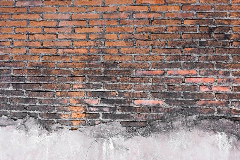 Hög upplösning föreställer den orange modellen för tappning av tegelstenväggen royaltyfria foton