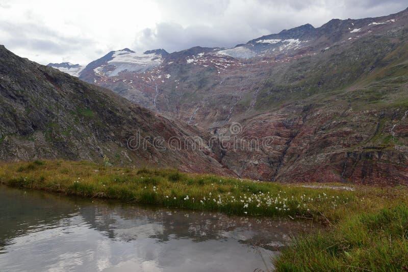 Höga berg som täckas av glaciärer i sommar Vildmarken och höglandet förtöjer nära Obergurgl, Oetztal i Tyrol, Österrike arkivfoton
