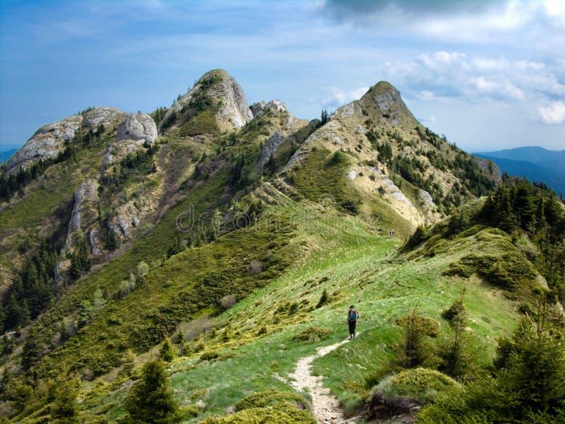 höga bergtorn fotografering för bildbyråer