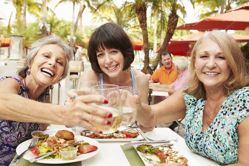 Höga kvinnliga vänner som äter mål i utomhus- restaurang arkivfoton