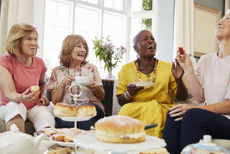 Höga kvinnliga vänner som hemma tycker om eftermiddagte tillsammans royaltyfri foto