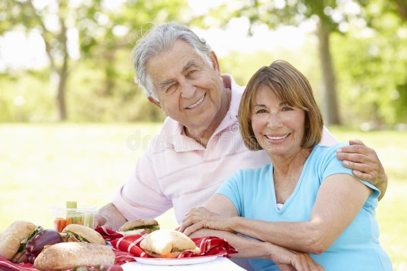 Höga latinamerikanska par som tycker om picknicken parkerar in royaltyfria foton