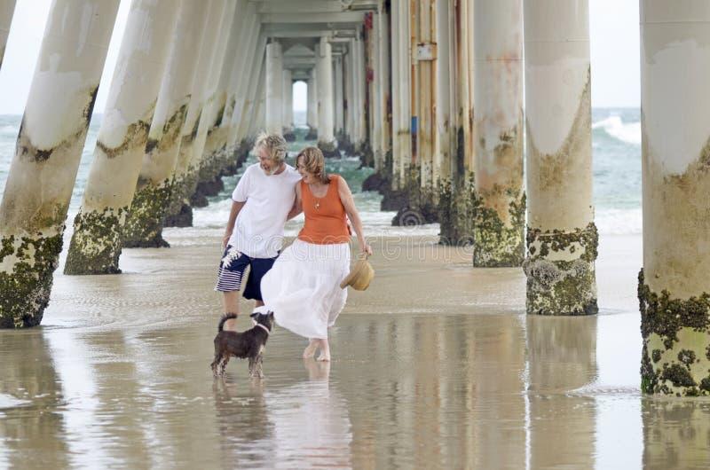 Höga lyckliga par som skrattar på stranden, semestrar med den älsklings- valphunden fotografering för bildbyråer