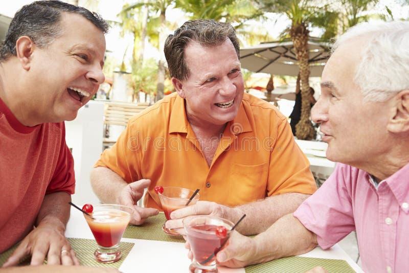 Höga manliga vänner som tillsammans tycker om coctailar i stång arkivbild