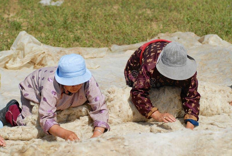 Höga mongoliska kvinnor producerar filt i Harhorin, Mongoliet royaltyfri foto