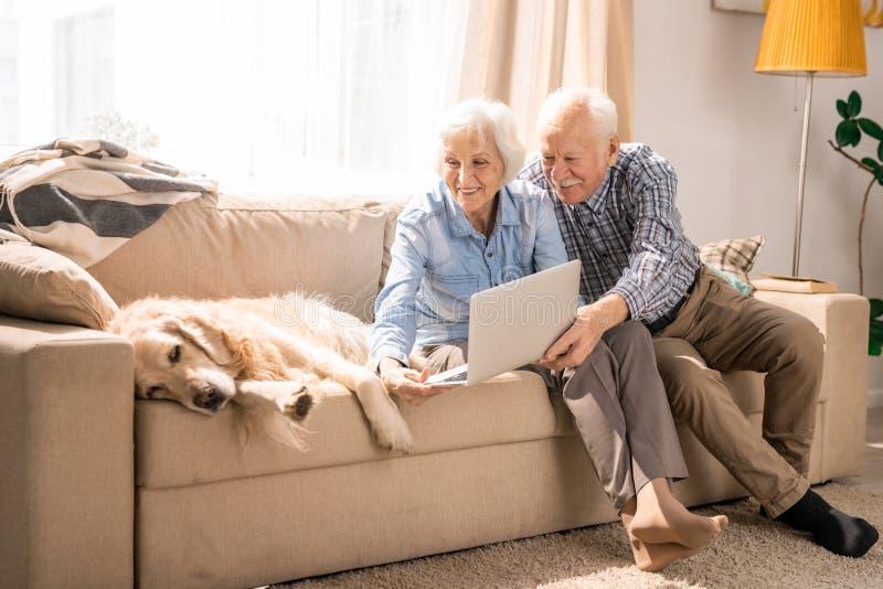Höga par genom att använda video pratstund med hunden royaltyfri bild