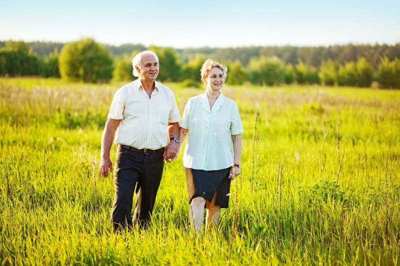 Höga par i ett fält royaltyfria foton
