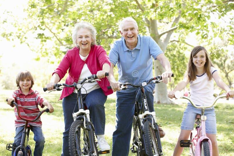 Höga par med barnbarn på cyklar arkivfoto