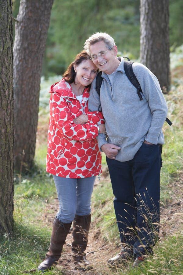 Höga par på land går till och med skogsmark arkivfoton