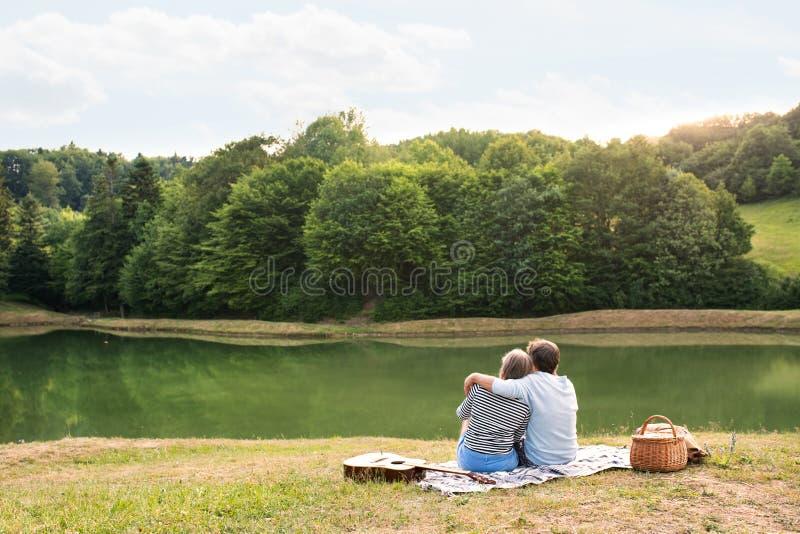 Höga par på sjön som har en picknick royaltyfri fotografi