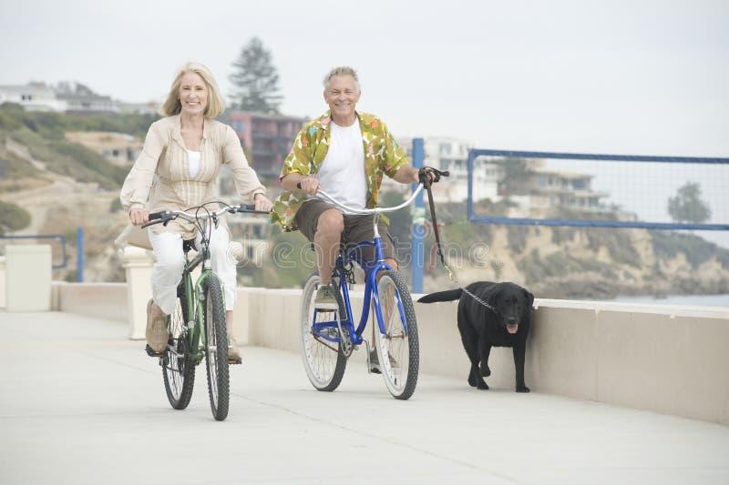 Höga par som cyklar med en hund arkivfoto