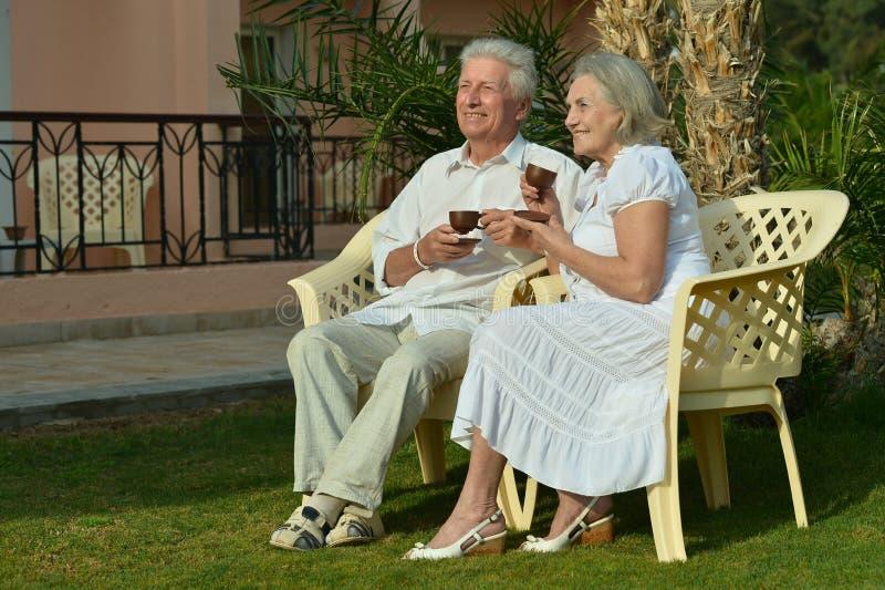 Höga par som dricker te i trädgård arkivbilder