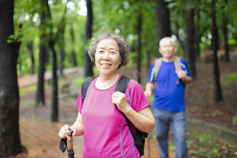 höga par som fotvandrar på Forestet Park arkivfoto