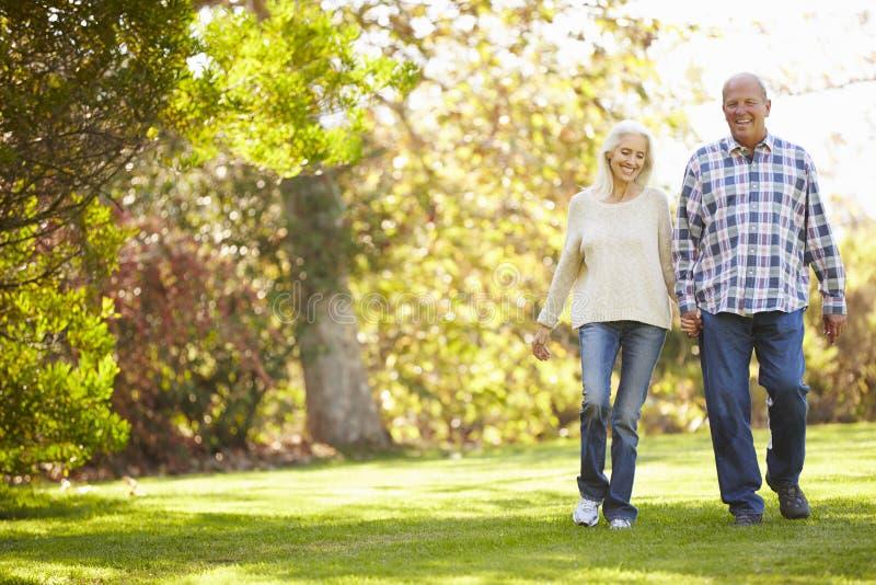 Höga par som går till och med Autumn Woodland royaltyfri foto